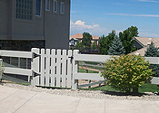 cedar fences denver