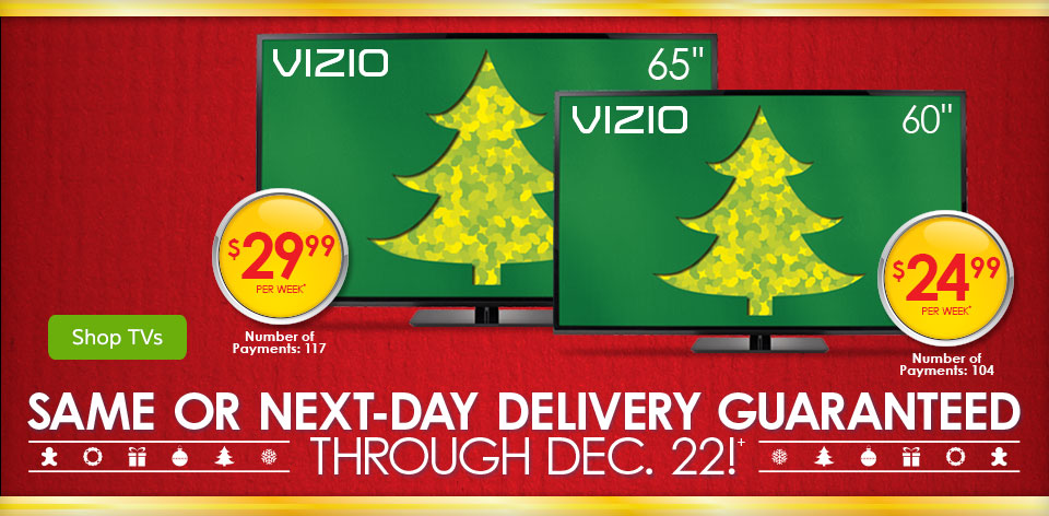 Same or Next-Day Delivery Guaranteed Through December 22nd+