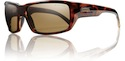 Smith Sunglasses Touchstone Tortoise Polarized Brown